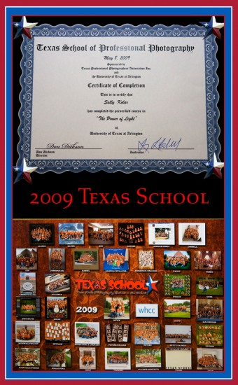 texas-school-blog